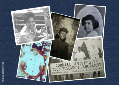 Montage of scientists' photos